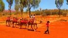 砂漠の中をラクダに乗って!
