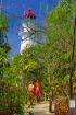 ロウアイルズ島散策