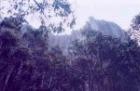 奇岩オルガンパイプス