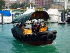サンパン船にも乗船できます