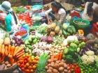 色鮮やかな野菜が並ぶ市場