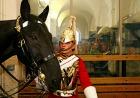 伝統的な衣装に身を包んだ騎兵隊
