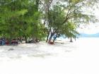 白砂のビーチ