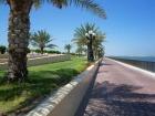眺めの良い海岸線