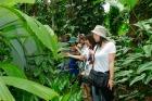 珍しい植物がいっぱい。ボタニックガーデン