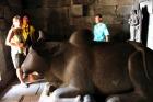 寺院の中には牛が
