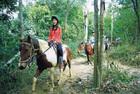 自然の中での2時間の乗馬をお楽しみください。