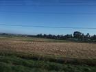 美しい景色をみながらダンデノンズ丘陵へ