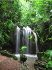 パークの奥にある美しい滝