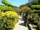 外島海上農園(ウェドへサンノンウォン)