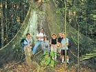熱帯雨林散策