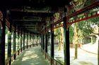 長廊の梁に描かれている美しい色彩画