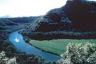 ワイルア川