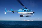 ハーディリーフのポンツーンへは片道ヘリコプターで