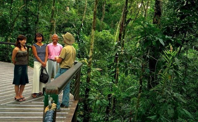 スカイレールで途中下車 熱帯雨林散策も。