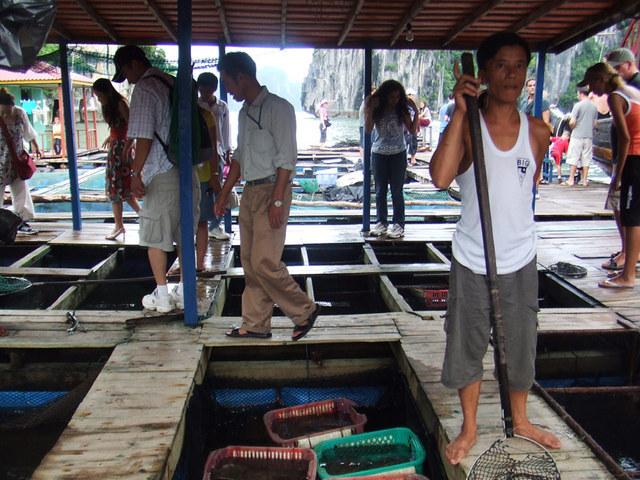 フィッシュアームでご購入いただいた魚は昼食で食べられます!