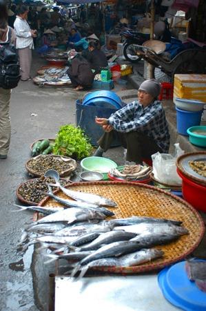 ハイフォンの市場は珍しい魚があって面白いです。