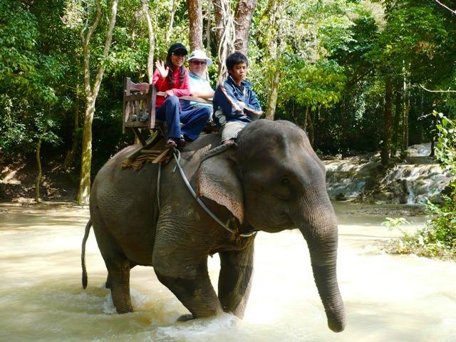 セーの滝では象乗り体験もできる
