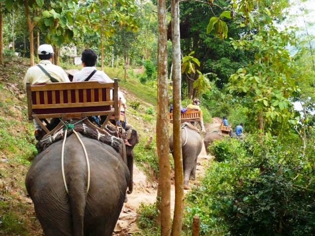 象に乗って山や川へトレッキング