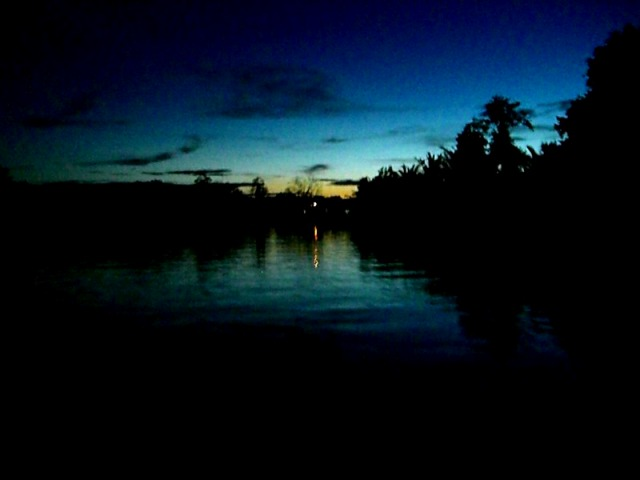 マングローブに囲まれた川をすすみます