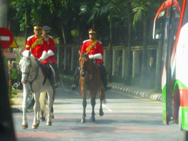 王宮の衛兵