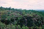 国立公園内の景色