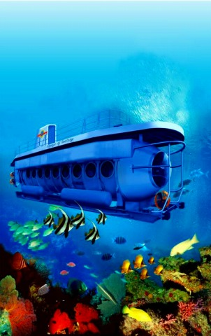優雅な水中探検・・・