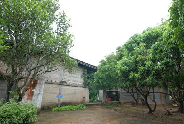 タモクの家