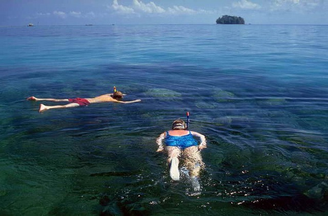 シュノーケリングでも海をご堪能下さい