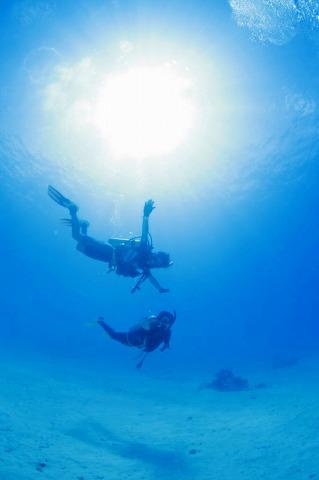 海の中を飛んでるみたい