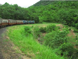 のんびりと走る列車