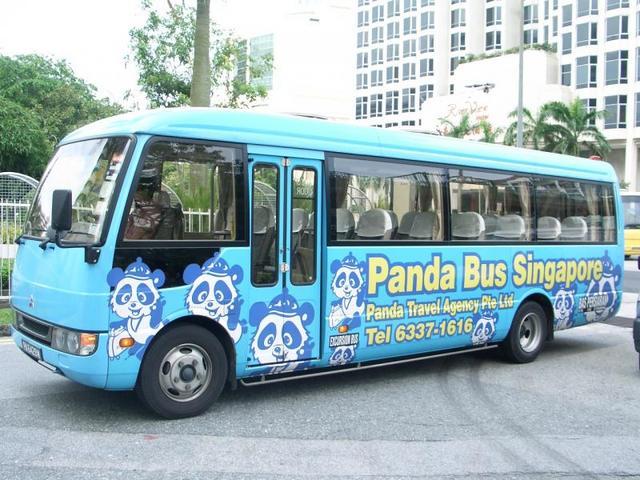 大きなバスもございます