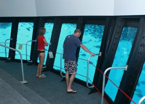 リーフワールドの海中展望室