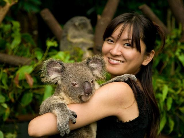 希望すればコアラ抱っこも可能