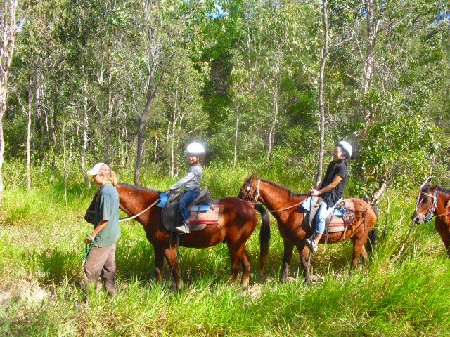 自然の中にあるコースを乗馬