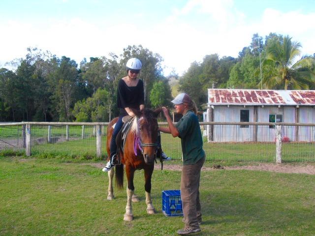 馬に乗りました!