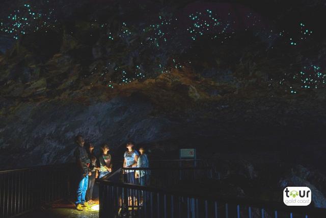 土ボタルが生息する洞窟を探検!