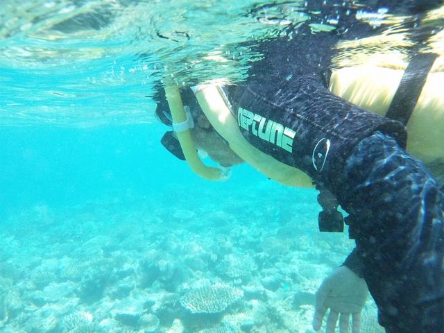 すぐ近くに珊瑚が!!