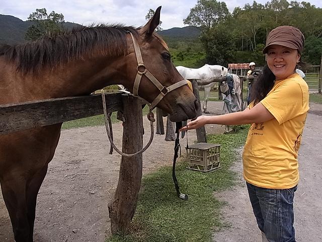 乗馬後、馬にごほうびをあげます