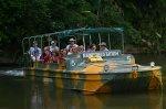 水陸両用車でジャングル体験