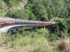 日本語ガイド付き キュランダ1日ツアー (列車+スカイレール)