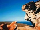 カンガルー島ウィルダネス・ワイルドスケープ 1日4WDツアー フリンダースチェイス国立公園付き