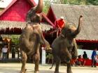 サムプラン象園 象乗り体験付き タイ文化テーマパーク<午後発>
