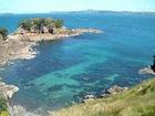 ワイナリー&リゾートの島、ワイヘキへ行く オークランド発日本語ガイド付き1日ツアー