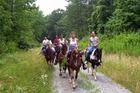 ニュージーランドの大自然を行く!オークランド発半日乗馬ツアー