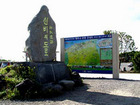 【済州市出発】済州市内観光+グルメツアー