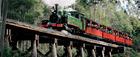パッフィンビリーSL列車とヤラバレー・ワイナリーズ