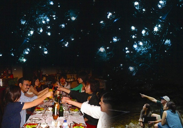 土ボタルと夜行性動物探検ツアー(エコツーリズムオーストラリア認定ツアー!)