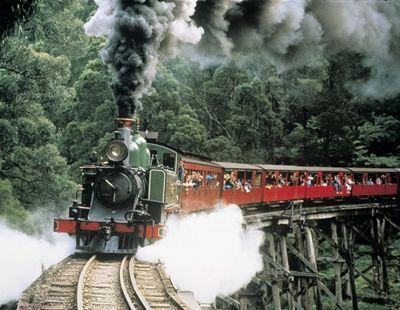 森林浴!蒸気機関車とダンデノン丘陵(日本語)