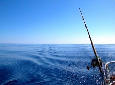 アラビア湾で魚釣りに挑戦!! チャーターボートでドバイ・フィッシングツアー